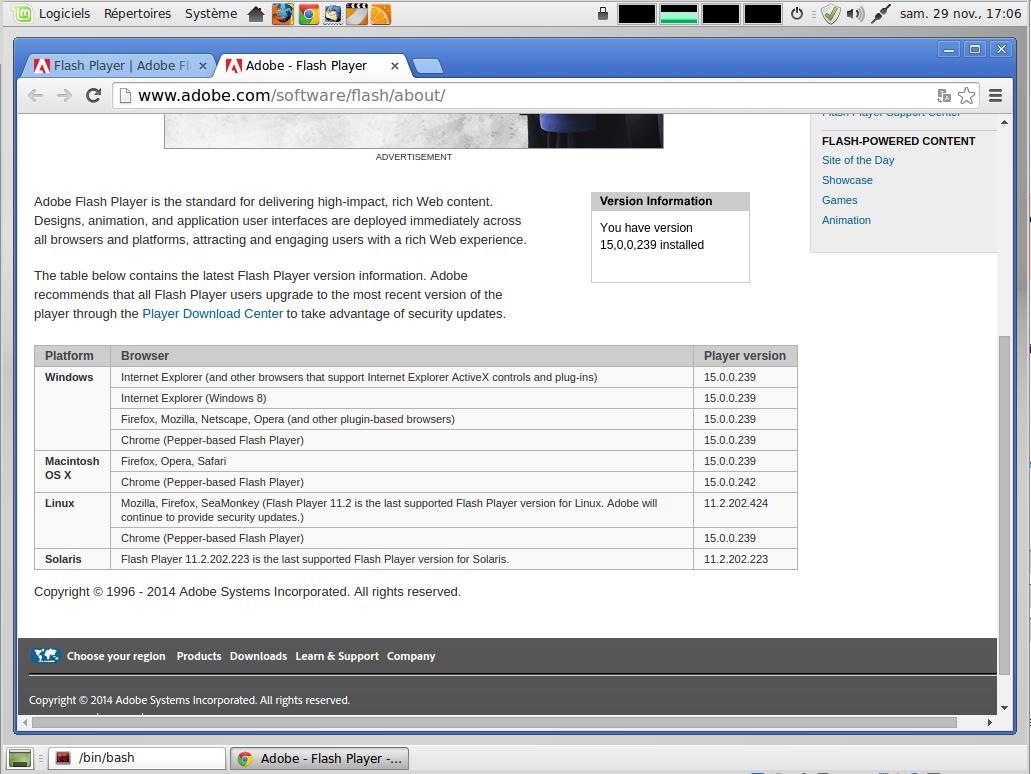 linux mint maya valombre-v07 chrome flash 15